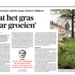 De Morgen - 1 oktober 2018 - Vlaanderen moet komaf maken met gemillimeterd grasperk Laat het gras maar groeien - Louis De Jaeger - Commensalist KRANT ByeByeGrass