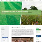 ByeByeGrass - Commensalist - Centaurea - Ecoduct - Bye Bye Grass - Pers - Make Belgium Wild Again - BAF
