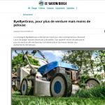 ByeByeGrass - Commensalist - Centaurea - Ecoduct - Bye Bye Grass - Pers - Make Belgium Wild Again - Le Sillon Belge