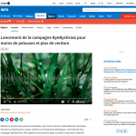 ByeByeGrass - Commensalist - Centaurea - Ecoduct - Bye Bye Grass - Pers - Make Belgium Wild Again - RTBF