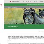 ByeByeGrass - Commensalist - Centaurea - Ecoduct - Bye Bye Grass - Pers - Make Belgium Wild Again - Solidarité