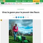 ByeByeGrass - Commensalist - Centaurea - Ecoduct - Bye Bye Grass - Pers - Make Belgium Wild Again - L'avenir 2