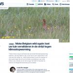 ByeByeGrass - Commensalist - Centaurea - Ecoduct - Bye Bye Grass - Pers - Make Belgium Wild Again - VRT 2